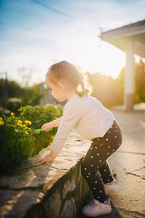Young girl planting seedlings in the garden at summer sunny day