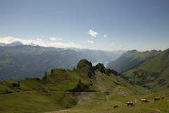 Swiss_201908_DSC6834