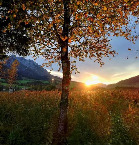 HerbstZeit*