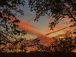 Morning Sky_2620