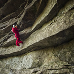 Elmo climbs