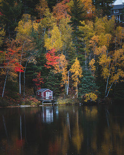 Cabin By The Lake