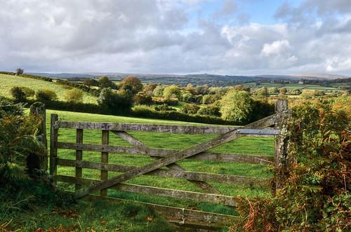 Farm gate on Dartmoor