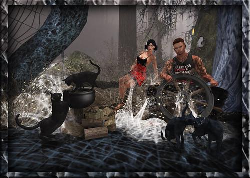 Blog 209 - SpideyCats