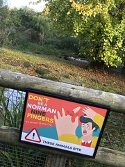 Don't be a Norman Nine Fingers