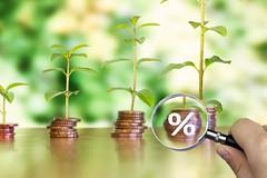 Geld mit Wachstum - Ausschnitt mit Prozent