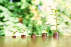 Geld mit Wachstum