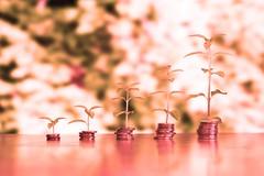 Geld mit Wachstum - rot