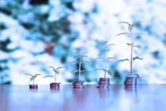 Geld mit Wachstum - blau