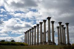 National Capitol Columns, US National Arboretum
