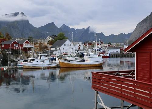 Life in Lofoten