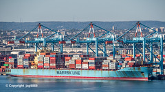 MAERSK KINLOSS Container Ship, APM Container Terminal, Newark Bay, Port Elizabeth, New Jersey