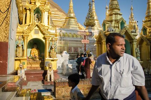 Visitor at Shwedagon Pagoda, Rangoon, Myanmar
