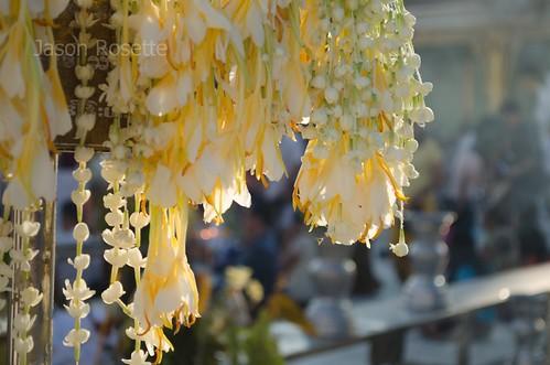 Buddhist Flower Garland Hanging in Sunshine