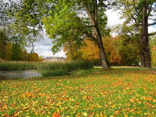 Schlosspark Molsdorf