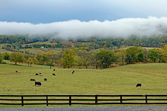 Clouds in the valley, near Bull Run Mountains