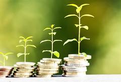 Geld im Wachstum