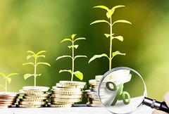 Geld im Wachstum mit Lupe