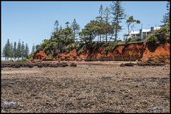 Low tide at Scarborough Red Cliffs-1=