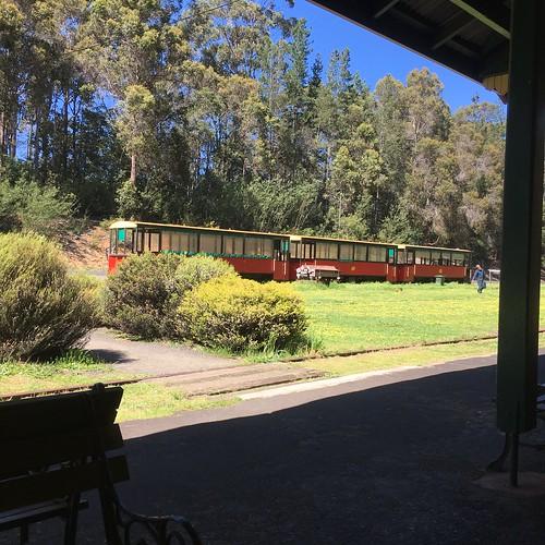 Pemberton Tram