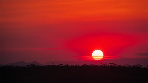 Bush Fire Sunset Wallpaper