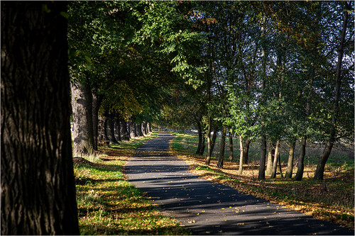 Autumn . River Elbe