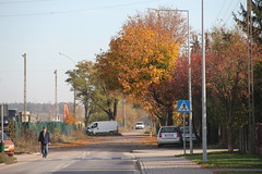 Kobylnica village