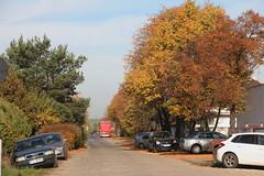 Ligowiec village