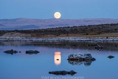 Mono Moon Rise