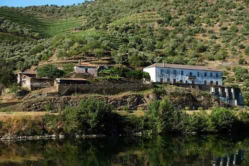 Douro River 38
