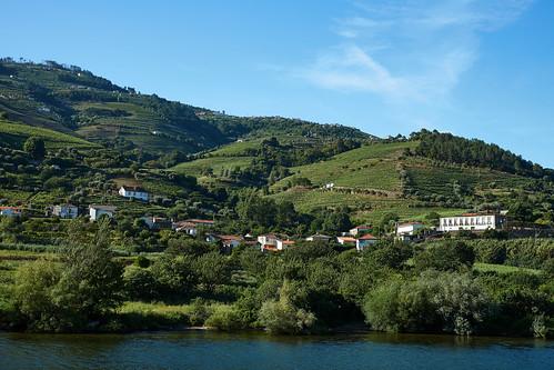Douro River 7