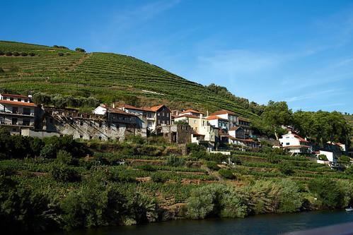 Douro River 9