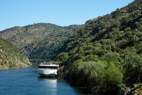 Douro River 45