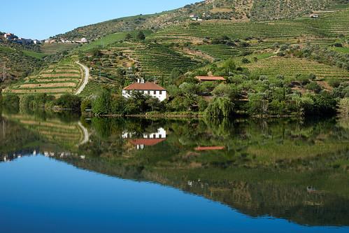 Douro River 40