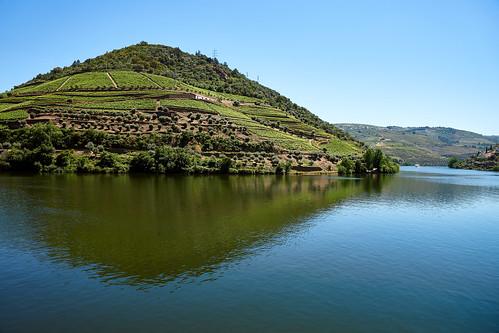 Douro River 11