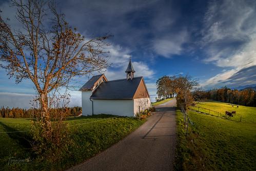 Herbst am Fünfländerblick Grub (SG)