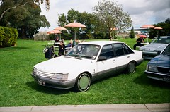 1984-1986 Holden Comodore (VK)
