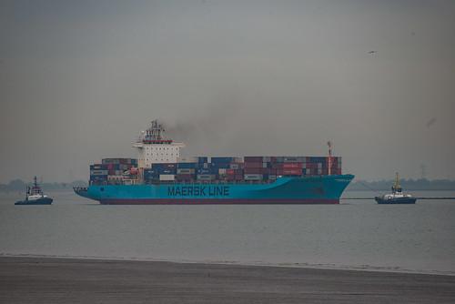 2019 10 24 Maersk Patras_DVL3804