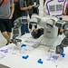 Ambidextrous Robot-Artist