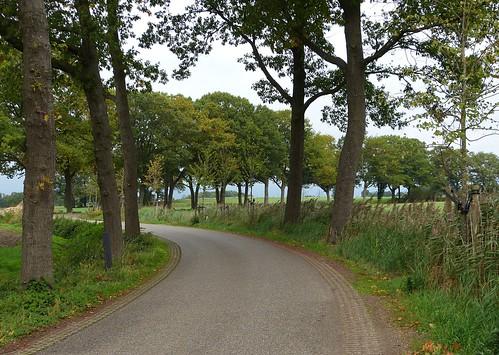 A winding road to Vragender - Achterhoek