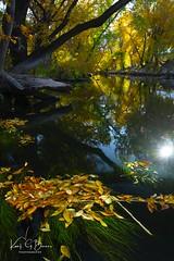 2019 Oct River