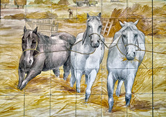 3 Horses,   National Museum of the Azulejo (National Tile Museum), Lisbon