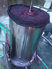 Bladder Press with Pressed Pinot Noir