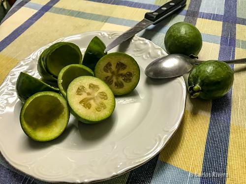 Feijoas, fruta fruta...