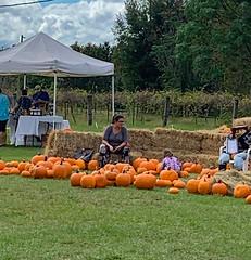 Strong Tower Vineyard Harvest Festival