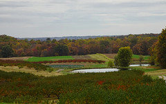 Maryland Farm Country