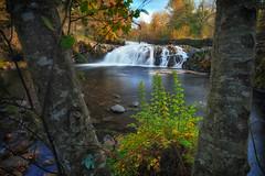 Scott's Mills Falls