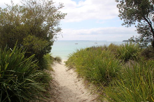 Path to Collingwood Beach