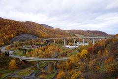 Asari Sky Loop in autumn colors