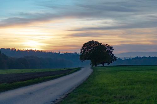 Route de Passafou